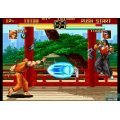 Art of Fighting Collection (NeoGeo Online Collection the Best)