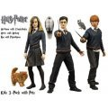 Harry Potter Order of the Phoenix Figure Set: 3 Kids with pets
