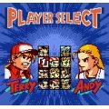 Fatal Fury First Contact [loose]