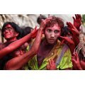 The Green Inferno [Blu-ray+Digital HD]
