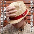 One Piece Luffy's Straw Style Hat