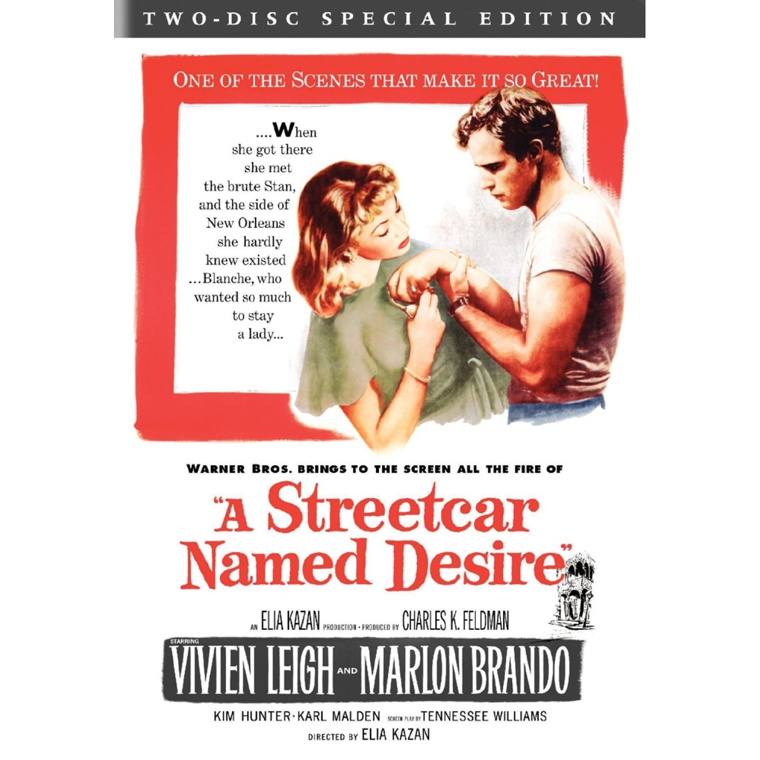 a streetcar named desire the women One of the themes in tennessee williams' play, a streetcar named desire, concerns gender roles in the play, stanley is depicted as the dominant male figure he is described to have a beast-like quality about him, suggesting that he is not only physically built, but that he also has a bad temper.