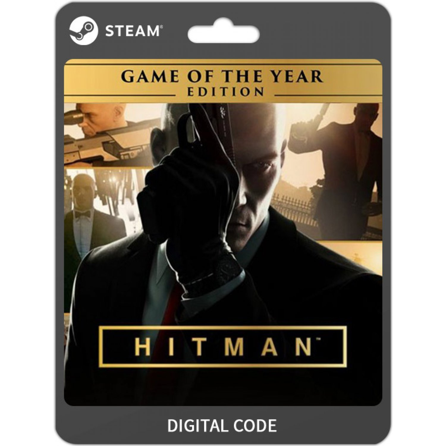 Hitman Game Of The Year Edition Steam Digital