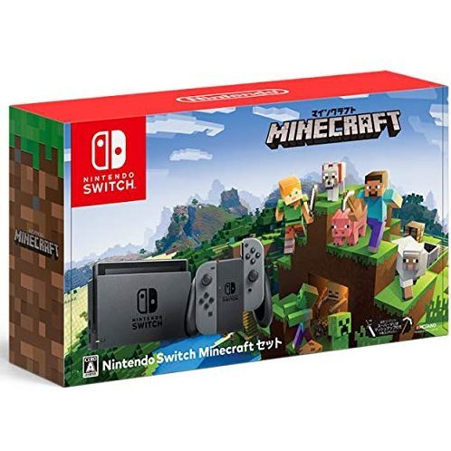 Nintendo Switch Minecraft Set