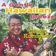 A Gentle Hawaiian Breeze - The Best Of Slack Key Guitar Songs (Japan)