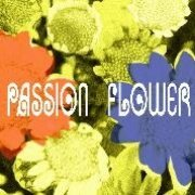 Passion Flower [Limited Edition] (Japan)
