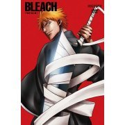 Bleach Soul Society Sennyu Hen 1 (Japan)