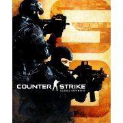 Counter-Strike: Global Offensive (Steam) steam (Region Free)