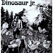 Dinosaur Jr. (US)