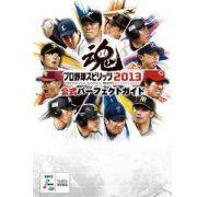 Professional Baseball Spirits Complete Guide (Japan)