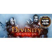Divinity: Original Sin (Steam)  steam (Region Free)