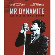 Mr Dynamite: The Rise of James Brown (US)
