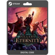 Pillars of Eternity - The White March Part I  steam digital (Region Free)