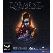 Torment: Tides of Numenera (Steam) steam digital (Region Free)