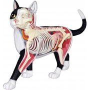 4D VISION Animal Dissection No. 29: Cat Anatomy Model Black / White (Re-run) (Japan)
