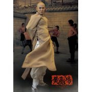 The Kung Fu Master 1/6 Scale Collectible Action Figure Set (Asia)