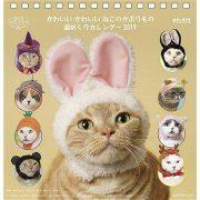 Kawaii Kawaii Neko No Kaburimono - 2019 Desktop Calendar (Japan)