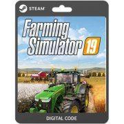 Farming Simulator 19  steam (Region Free)