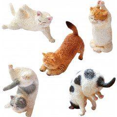 ANIMAL LIFE BABY YOGA CAT (SET OF 6 PIECES) Yendar