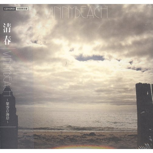 Vinnybeach [CD+DVD Limited Edition]