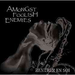 Amongst Foolish Enemies