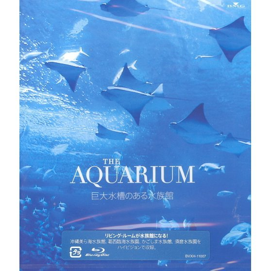 The Aquarium Kyodai Suiso No Aru Suizokukan