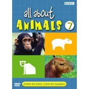 All About Animals 7