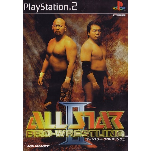All Star Pro-Wrestling II