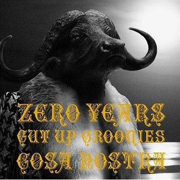 Zero Years Cut Up Groovies