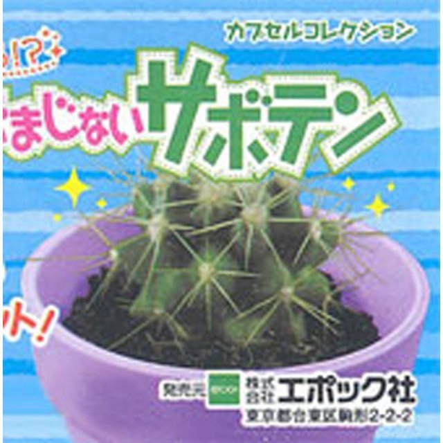 Secret Charm Cactus DX