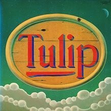 Tulip Land [Limited Edition]
