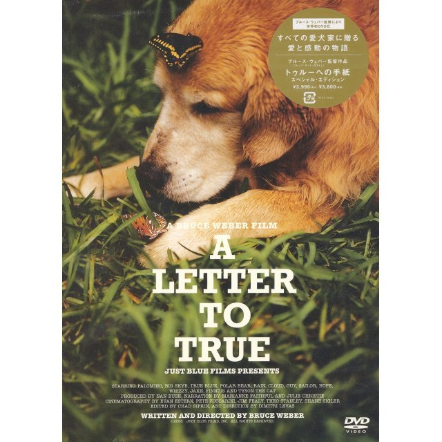 A Letter To True Special Edition