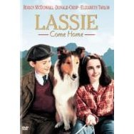 Lassie Come Home [Limited Pressing]