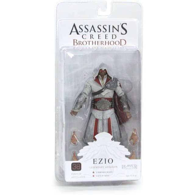Assassin's Creed Brotherhood 7