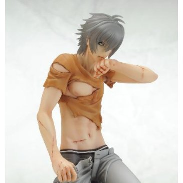 Togainu no Chi - True Blood 1/8 Scale Pre-Painted PVC Figure: Akira Damaged Ver.