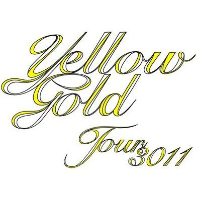 Yellow Gold Tour 3011 [Limited Edition 2DVD]