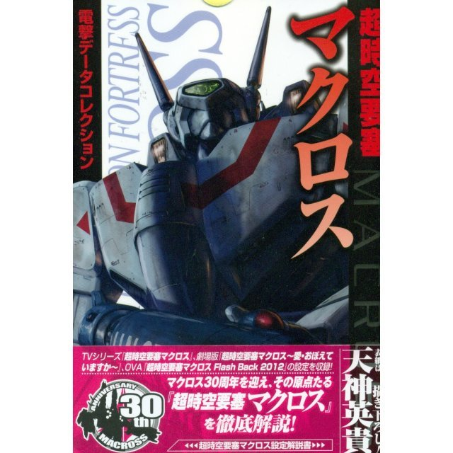 The Super Dimension Fortress Macross - Dengeki Hobby