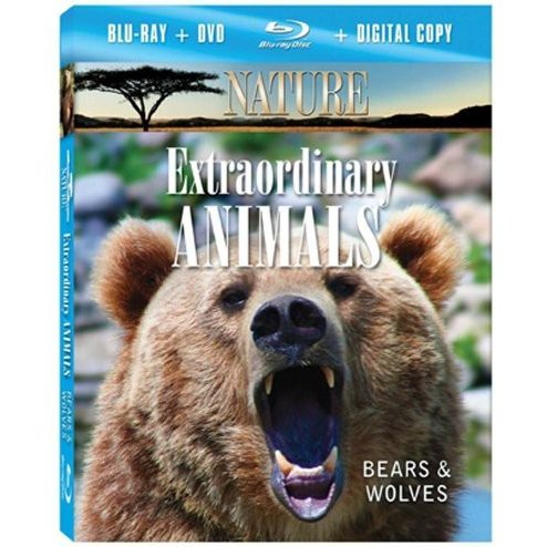 Nature: Extraordinary Animals: Bears & Wolves [Blu-ray + DVD Combo Pack]
