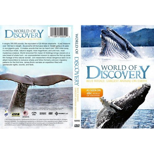 World of Discovery: Blue Whale Largest Animal on Earth