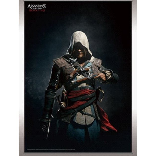 Assassin's Creed IV Black Flag Wall Scroll Vol.2