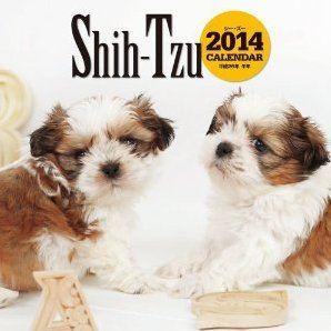 Shih Tzu Calendar 2014