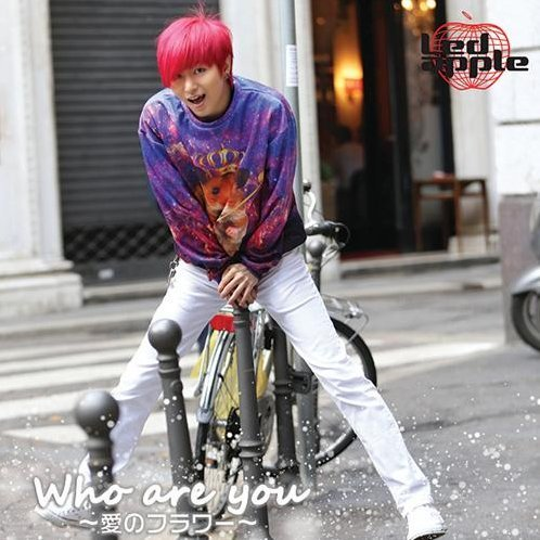 Who Are You - Ai No Flower Young Jun Ver. [CD+DVD Limited Edition]