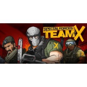 Special Forces: Team X (Steam)