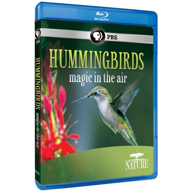 Nature: Hummingbirds - Magic in the Air