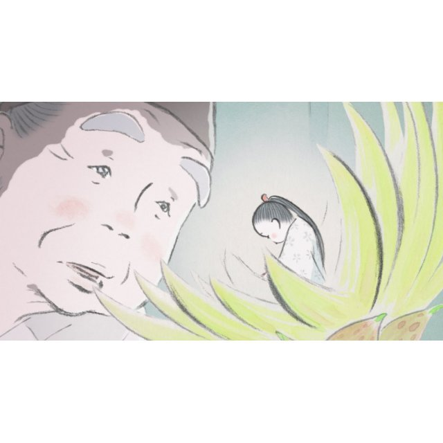 the wind rises dvd release date the tale of the princess kaguya blu raydvd