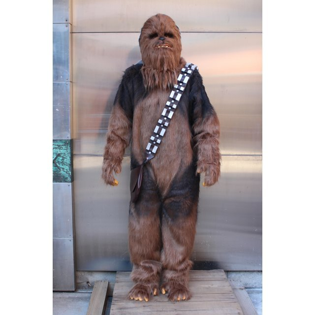Star Wars: Chewbacca Suits