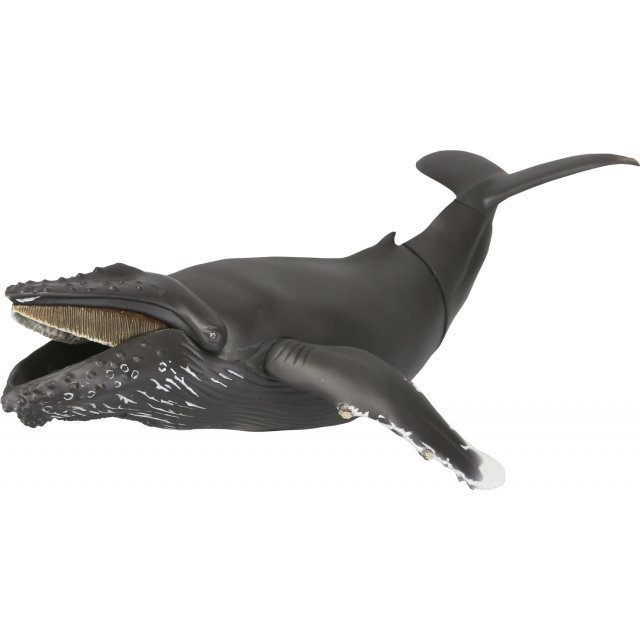 Soft Vinyl Toy Box 013 Humpback Whale
