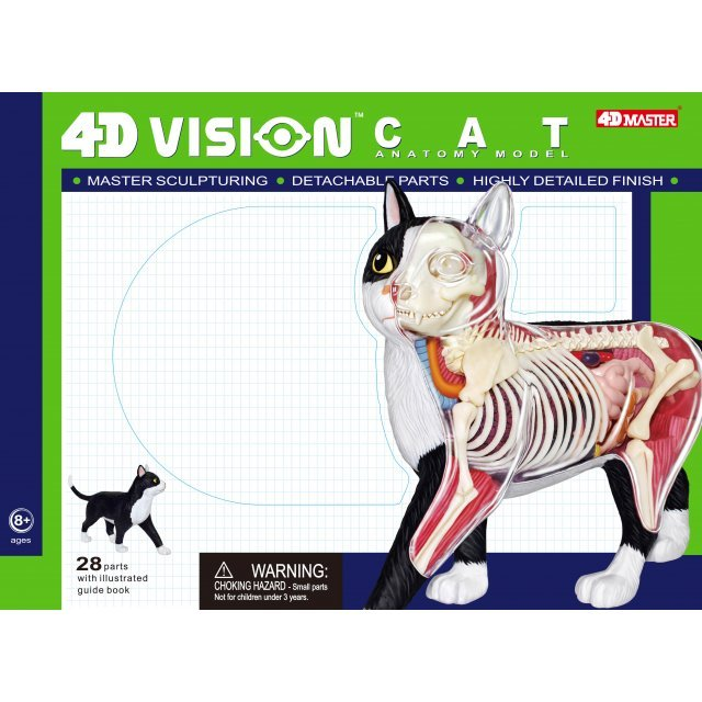 4d Vision Animal Dissection No 29 Cat Anatomy Model Black White