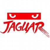 Atari Jaguar™